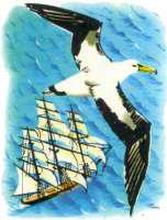 a comparison of the albatross and the swan by charles baudelaire