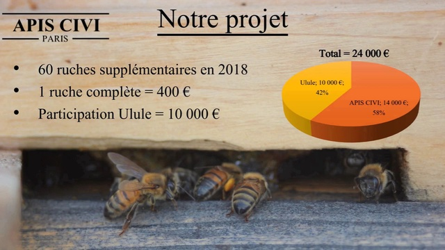 apiculteur 24000