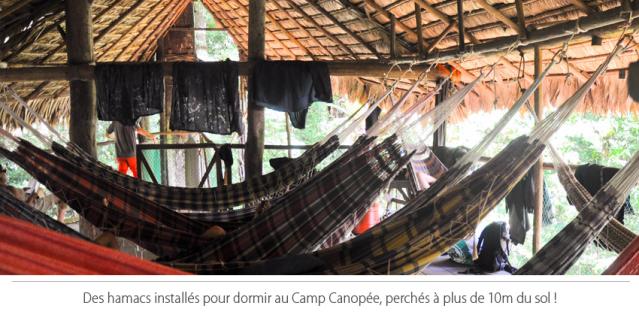 Hamacs au camp canopée