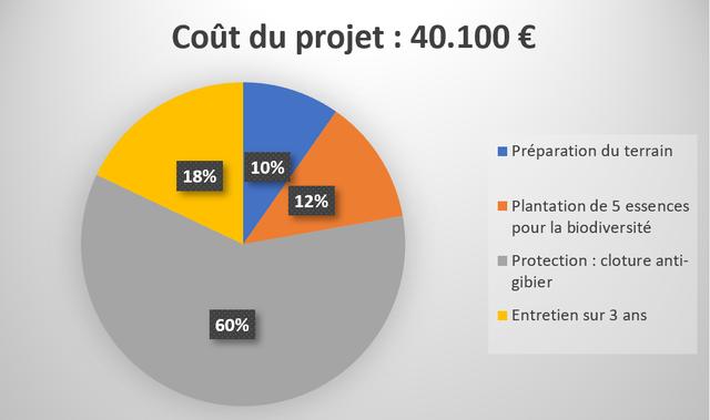 Cout du projet : 40.100 E Preparation du terrain 10% 18% 12% Plantation de 5 essences pour la biodiversite Protection cloture anti- gibier Entretien sur 3 ans 60%