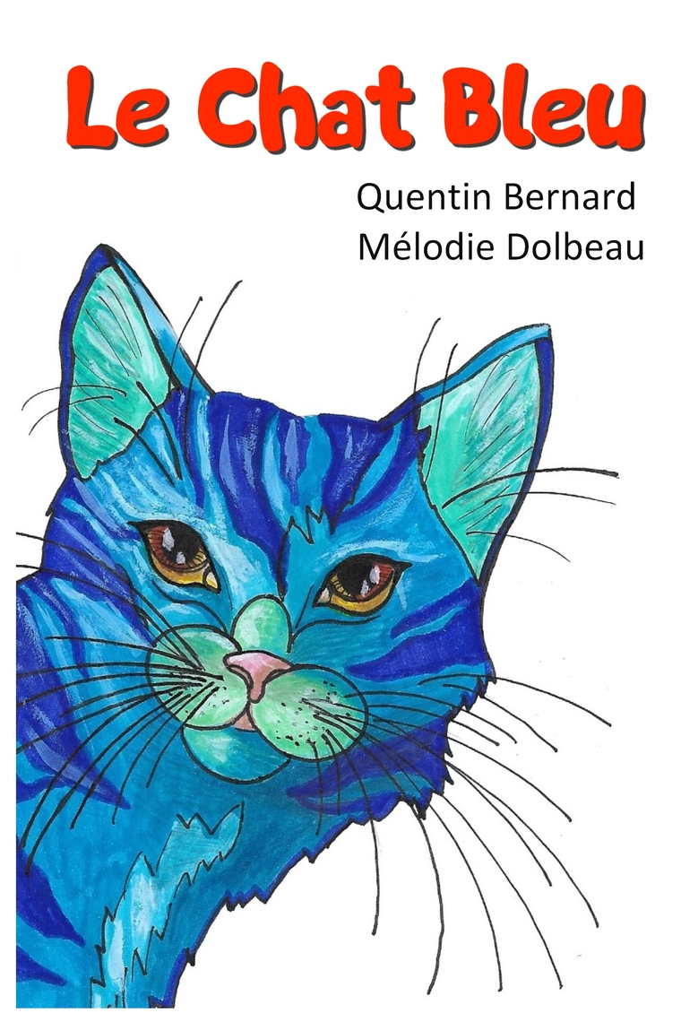 Le Chat Quentin Bernard Mélodie Dolbeau