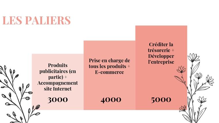 LES PALIERS Créditer la trésorerie + Développer Prise en charge de l'entreprise Produits tous les produits + publicitaires (en E-commerce partie) + Accompagnement site Internet 3000 4000 5000