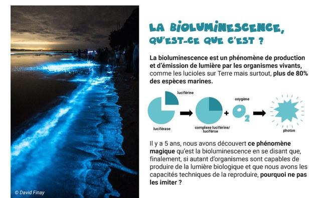 LA BiOLVMiNESCENCE QV'EST-CE QVE C'EST La bioluminescence est un phenomene de production et d'emission de lumiere par les organismes vivants, comme les lucioles sur Terre mais surtout, plus de 80% des especes marines. luciferine oxygene luciferase complexe luciferine/ luciferse photon II y a 5 ans, nous avons decouvert ce phenomene magique qu'est la bioluminescence en se disant que, finalement, si autant d'organismes sont capables de produire de la lumiere biologique et que nous avons les capacites techniques de la reproduire, pourquoi ne pas les imiter ? David Finay