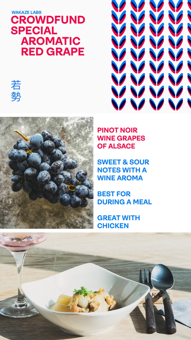 WAKAZE LABS CROWDFUND SPECIAL AROMATIC RED GRAPE PINOT NOIR WINE GRAPES OF ALSACE SWEET & SOUR NOTES WITH A WINE AROMA BEST FOR DURING A MEAL GREAT WITH CHICKEN