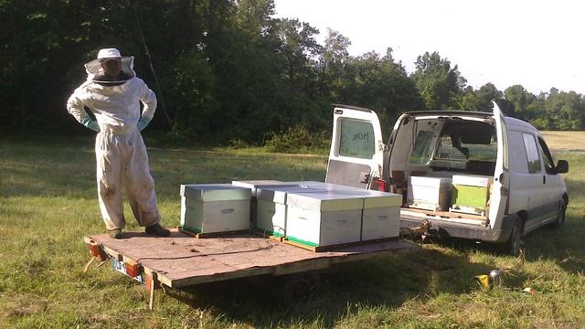 apiculteur jonzac