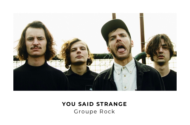 YOU SAID STRANGE Groupe Rock