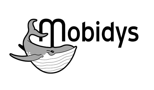 www.mobidys.fr le site internet de Mobidys