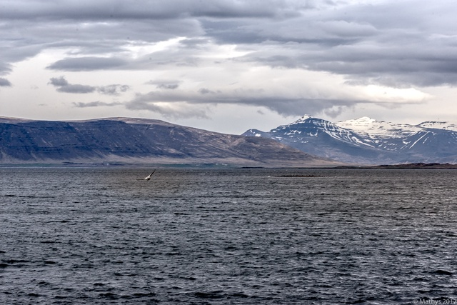 Explorer l'Islande, voyage Nordique