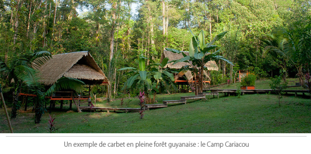 Camp Cariacou : exemple de carbet en site isolé