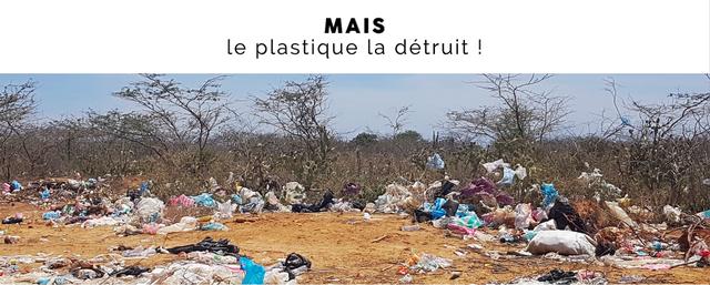 Photographie anti-plastique - Mazonia