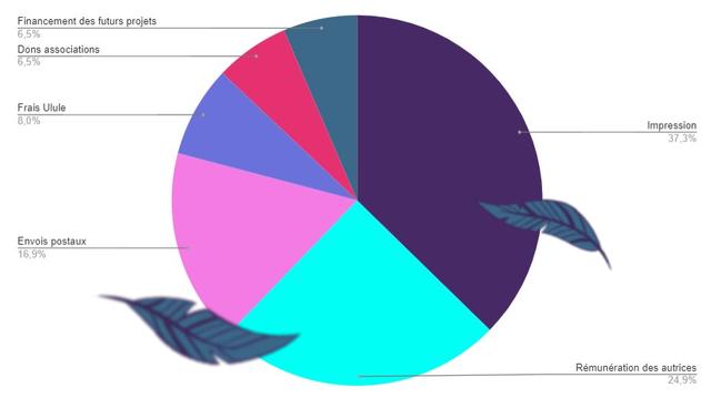 Financement des futurs projets 6,5% Dons associations 6,5% Frais Ulule 8,0% Impression 37,3% Envois postaux 16,9% Remuneration des autrices 24,9%