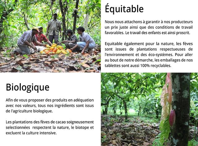 Equitable Nous nous attachons a garantir a nos producteurs un prix juste ainsi que des conditions de travail favorables. Le travai des enfants est ainsi proscrit. Equitable egalement pour la nature, les feves sont issues de plantations respectueuses de l'environnement et des eco-systemes. Pour aller au bout de notre demarche, les emballages de nos tablettes sont aussi 100% recyclables. Biologique Afin de vous proposer des produits en adequation avec nos valeurs, tous nos ingredients sont issus de I'agriculture biologique. Les plantations des feves de cacao soigneusement selectionnees respectent la nature, le biotope et excluent la culture intensive.