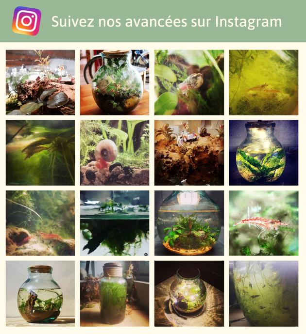 Suivez nos avancees sur Instagram