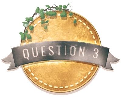 A QUESTION 3 3