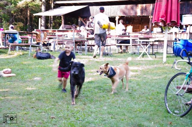 Enfants et chiens qui courent devant la cuisine extérieure
