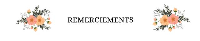 REMERCIEMENTS