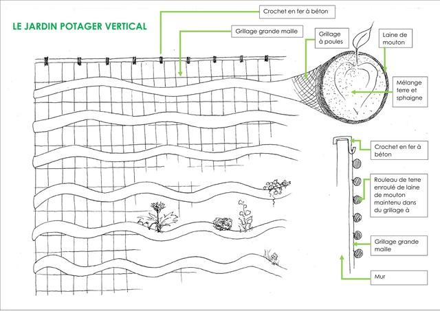 Informations pratiques pour r aliser son jardin potager for Realiser son jardin