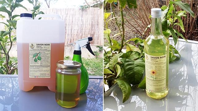 Savon noir à l'huile d'olive bio et savon noir à l'huile de tournesol bio | Vert chez-soi