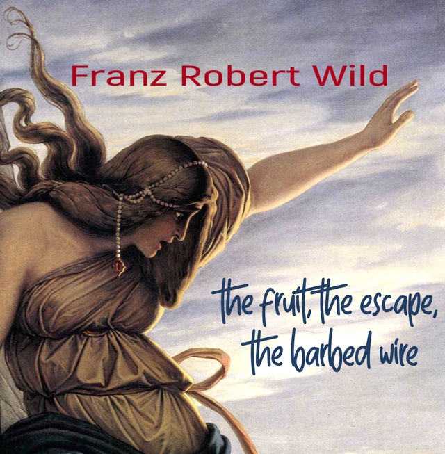 Franz Robert Wild - The Fruit, The escape, The Barbed Wire