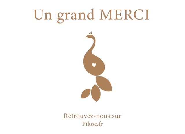 Un grand MERCI Retrouvez-nous sur Pikoc.fr