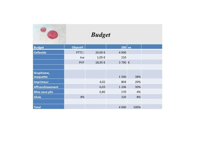 Budget Budget Objectif: 200 ex Collectes PTTC: 20,00 4 000 tva 1,05 E 210 PHT 18,95 3 790 Graphisme, maquette 1500 38% Imprimeur 4,02 804 20% Affranchissement 6,03 1 206 30% Mise sous plis 0,85 170 4% Ulule 8% 320 8% Total 4 000 100%